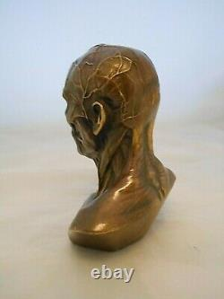 Curiosite Cabinet/bronze Bust Ecorche/medicine/office Object
