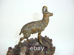 De Vienne Bronze Chamois sur Le Améthyste Um 1900 Vienne Bronze